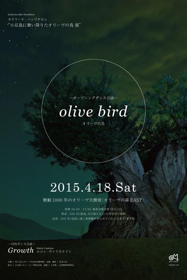 Pilemon Mukarno Olivebird_22